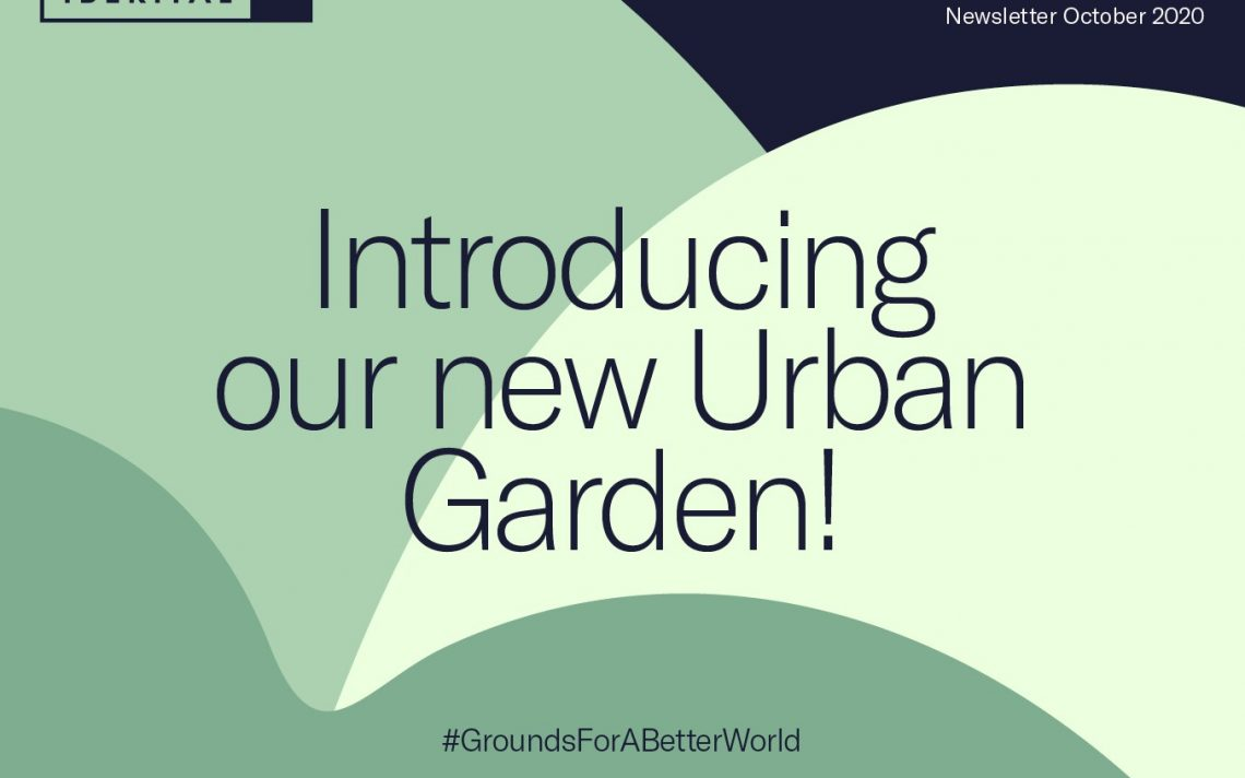 Introducing our new Urban Garden!